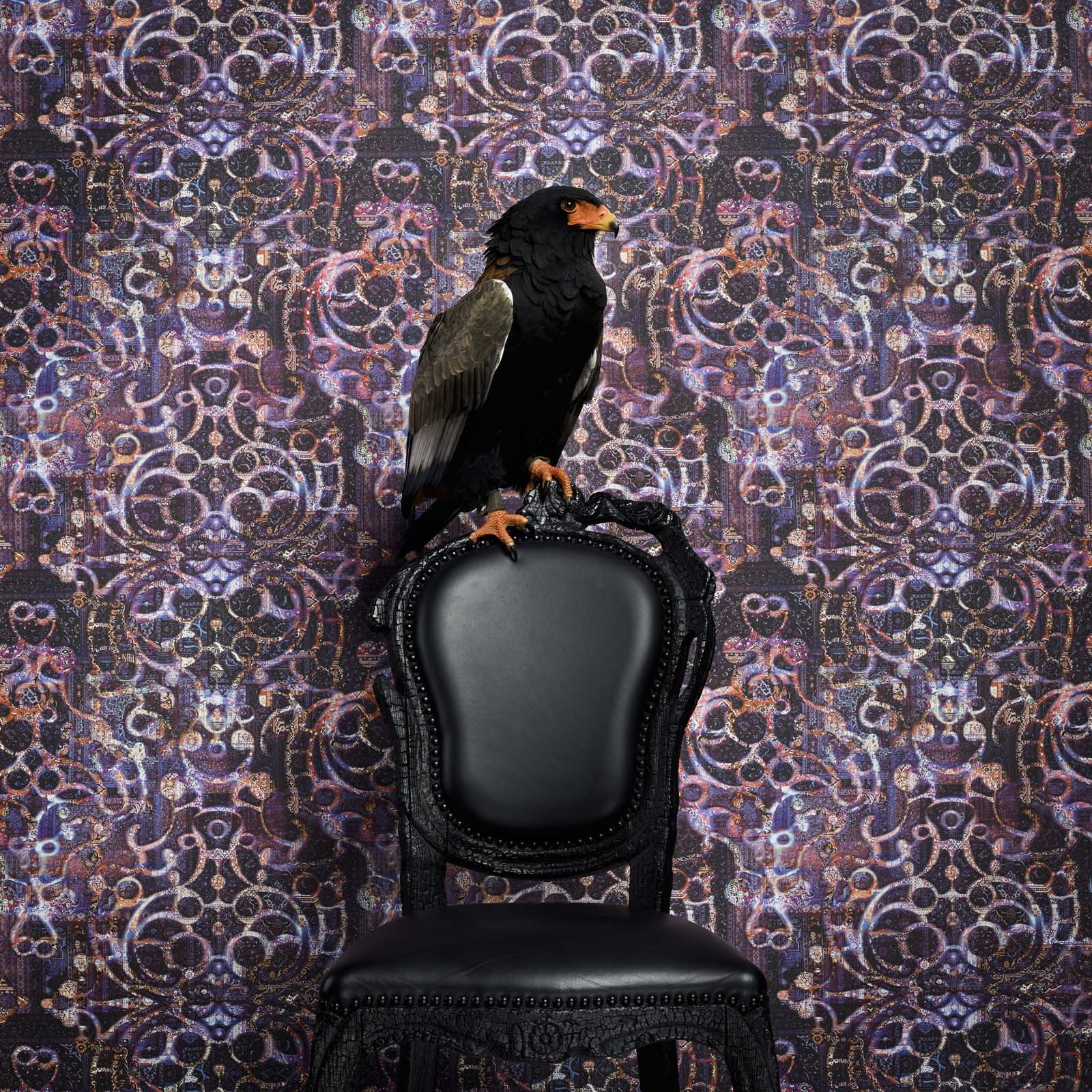 neo royal marcel wanders bn wallcoverings tapeten. Black Bedroom Furniture Sets. Home Design Ideas